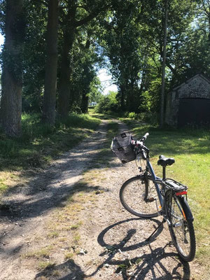 Balade en vélos ,autour des gîtes