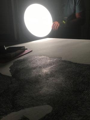 Dreharbeiten im Atelier in St. Nikola an der Donau