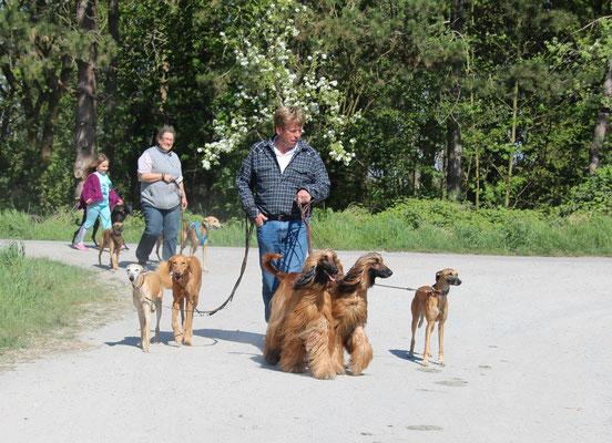 Gerhard beim Auslaufen unserer Hunde,