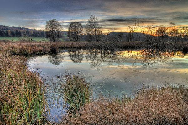 11 Deumauer Moor