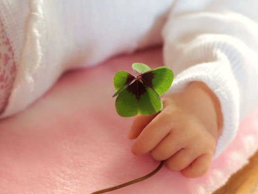 Baby Klee Glück Hände