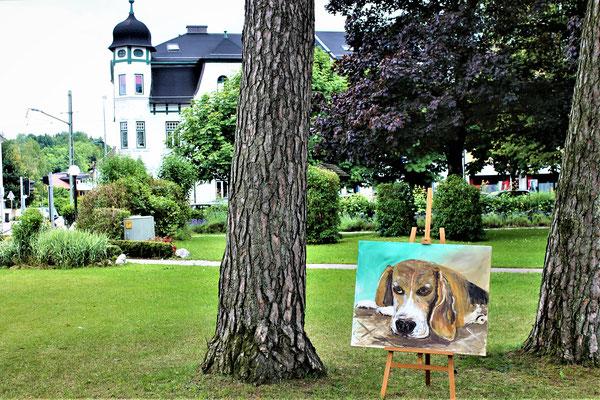 Monty im Stadtpark