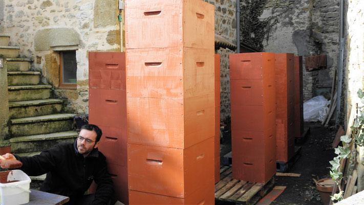 A partir de la saison 2017, les ruches sont protégées grâce à de la peinture à l'ocre (la saison débute, dom a les cheveux courts !)