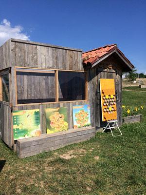 L'installation pédagogique de notre ruche