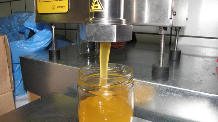 Avant le lancement de la nouvelle saison, on termine la mise en pots des miels de la saison passée