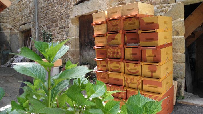 Les ruchettes pour l'élevage : on aide les jeunes reines à retrouver leurs maisons !