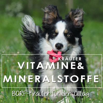 Kräutermischung für Hunde, deckt den täglichen Vitamin und Mineralstoffbedarf
