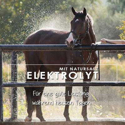 Elektrolyt mit Natursalz für eine gute Leistung bei starkem Schweissverlust, Kotwasser oder Durchfall für Pferde