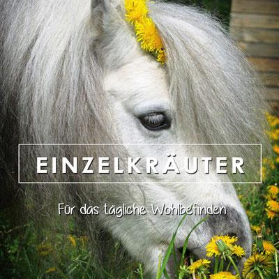Heilkräuter, Teekräuter, Einzelkräuter für Pferde und Hunde