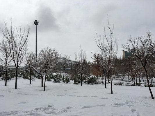 Schnee in Tabriz (Iran)