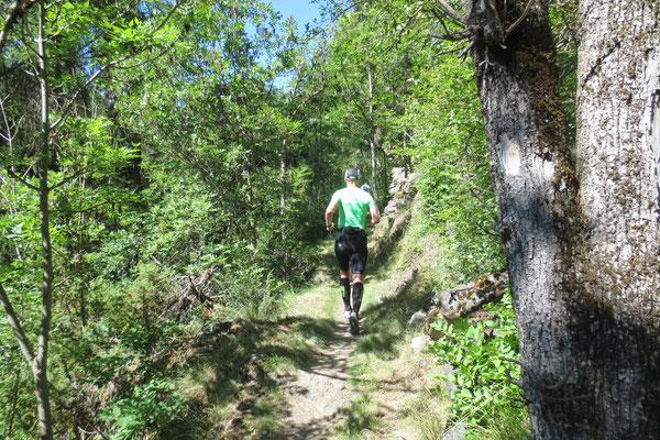 Schöner Trail Richtung Stilfs