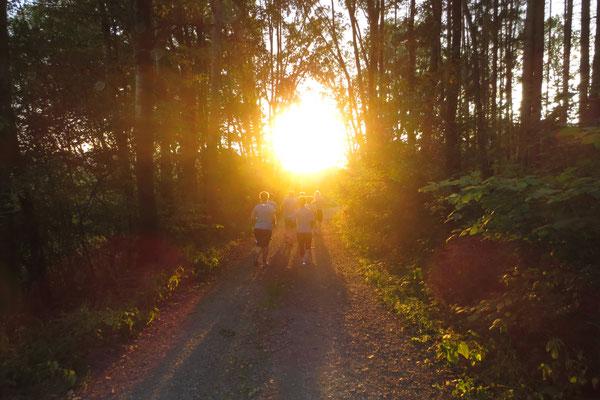 1. Sunset-Lauf