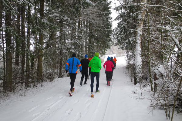Projekt Rennsteiglauf beginnt im Januar
