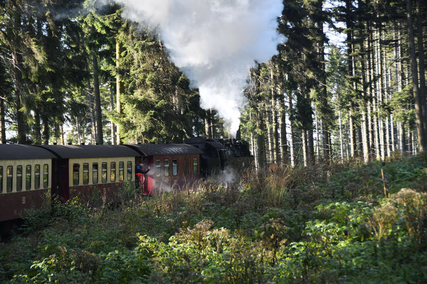 Drei-Tages-Ausflug Harz
