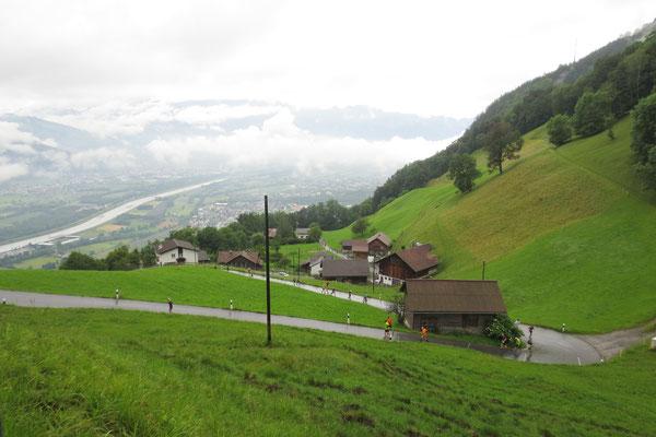 Talblick auf den Rheindamm