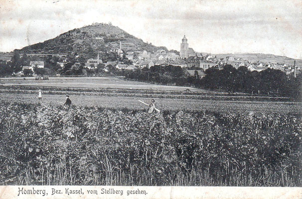 Homberg, vom Stellberg aus gesehen, Sammlung Dr. Klaus Lambrecht