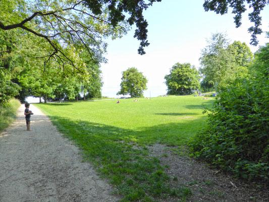 Liegewiese Hörlepark