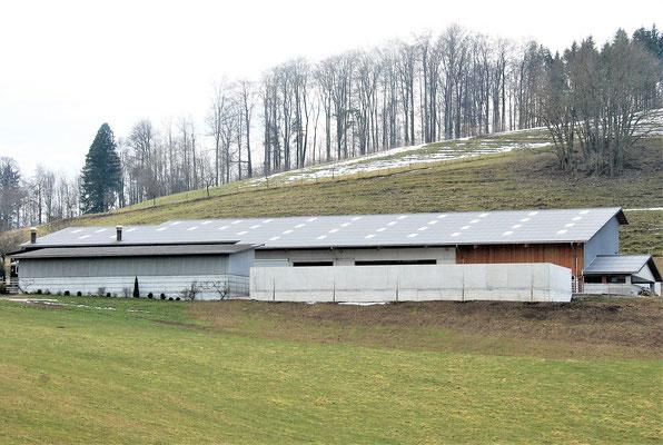 Bedachung mit Eternit Wellplatten, Mutterkuhstall, Benkenjoch, Oberhof