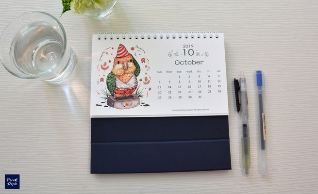 十月品種:金頭凱克鸚鵡