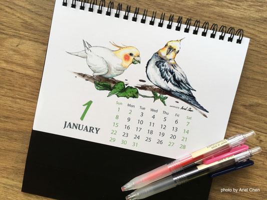 一月 品種:玄鳳鸚鵡