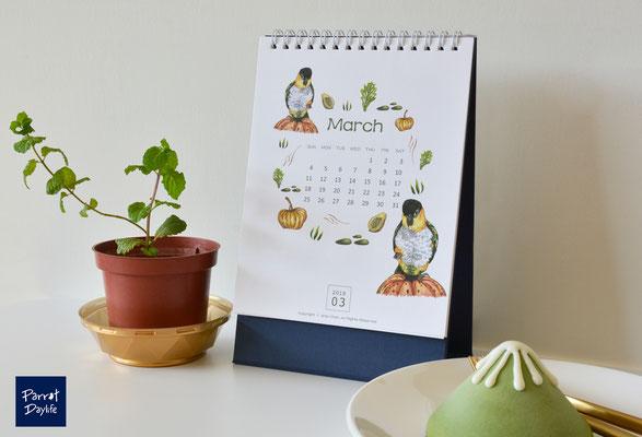三月 品種:黑頭凱克鸚鵡