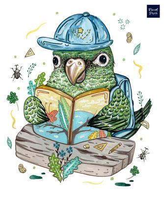 飽讀詩書是人生唯一的標準嗎? 作品:渲染人生的百分之一種方式 品種:賈丁鸚鵡