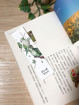 綠色款(品種:綠和尚鸚鵡、賈丁鸚鵡)