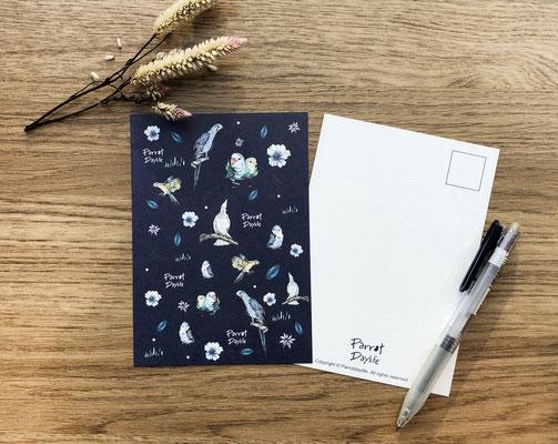 藍色款明信片(品種:藍金剛鸚鵡、牡丹鸚鵡、巴丹鸚鵡)