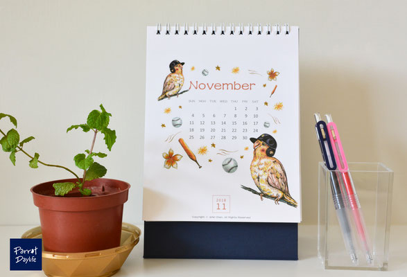 十一月 品種:玄鳳鸚鵡