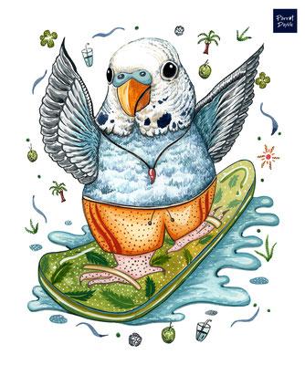 丹絨亞路海灘的衝浪者 無懼浪濤洶湧 盡情地與海浪共舞   作品:與海同行之旅 品種:藍色虎皮鸚鵡