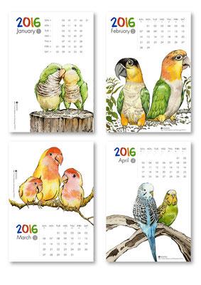 一月品種:和尚鸚鵡、二月品種:凱克鸚鵡、三月品種:牡丹鸚鵡、四月品種:虎皮鸚鵡