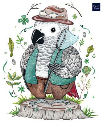 「捕魚去囉」故事性的插圖繪製 看來更加帶有個性又療癒呢~  作品:我家鸚哥捕魚去 品種:非洲灰鸚鵡
