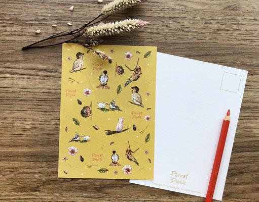 黃色款明信片(品種:玄鳳鸚鵡、凱克鸚鵡、赤腹小太陽鸚鵡、金太陽鸚鵡、粉紅巴丹鸚鵡)
