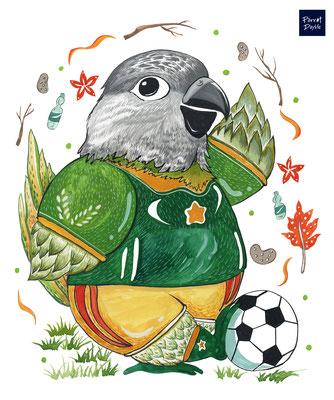 「全球瘋世足 開打囉」身為塞內加爾鸚鵡 就是該支持塞內加爾呀! 作品:賽內隊NO.1 品種:塞內加爾鸚鵡