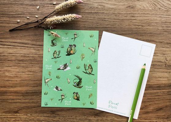 綠色款明信片(品種:和尚鸚鵡、黃帽鸚鵡、月輪鸚鵡、塞內加爾鸚鵡)