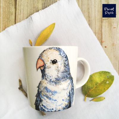 品種:藍牡丹鸚鵡