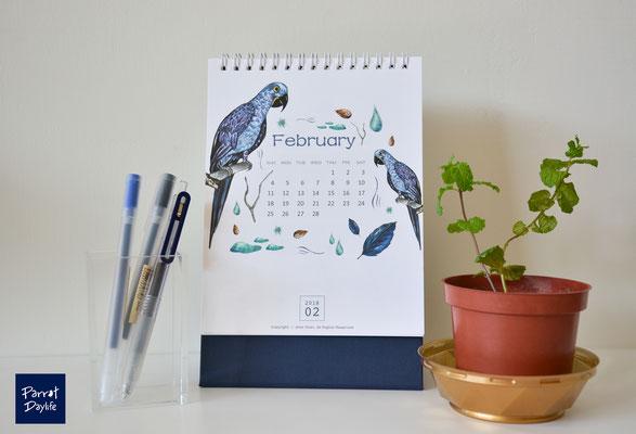 二月 品種:藍金剛鸚鵡