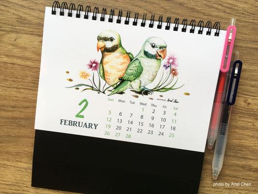 二月 品種:達摩鸚鵡