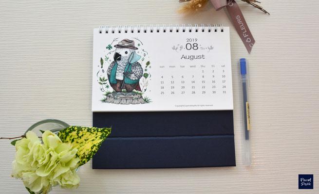 八月品種:非洲灰鸚鵡