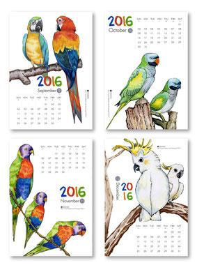 九月品種:金剛鸚鵡、十月品種:達摩鸚鵡、十一月品種:吸蜜鸚鵡、十二月品種:杜氏巴丹鸚鵡