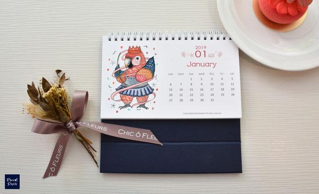 一月品種:琉璃金剛鸚鵡