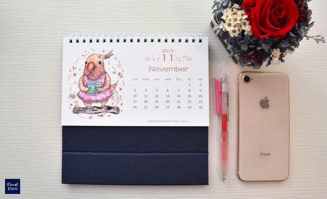 十一月品種:粉紅巴丹鸚鵡