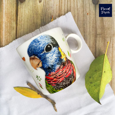 品種:吸蜜鸚鵡