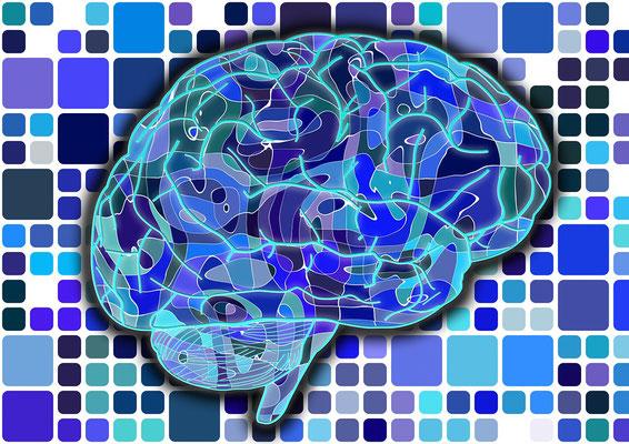 raisonnement et cohérence thérapeutique