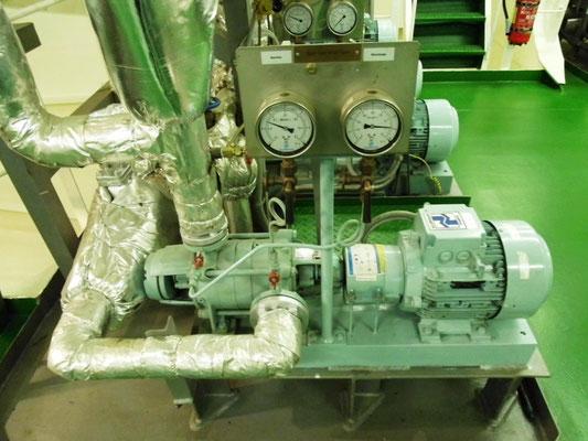 Abbildung 14:   Speisewasserpumpe für dei Schiffsdampfsystem (Foto Dr. Hochhaus)