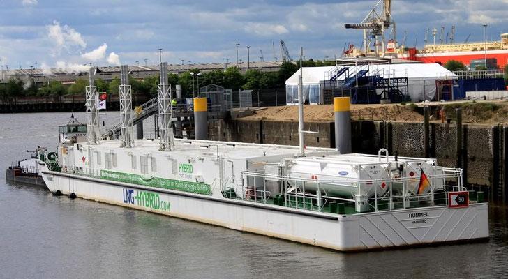 Die Hummel zur umweltfreundlichen Stromversorgung von Kreuzfahrtschiffen (Foto Dr. Hochhaus)
