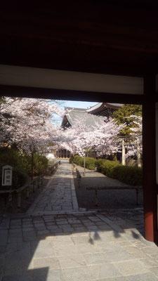 日蓮宗 本山 本法寺