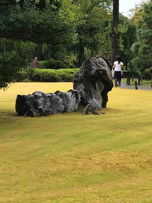 天守閣跡にあるライオン石