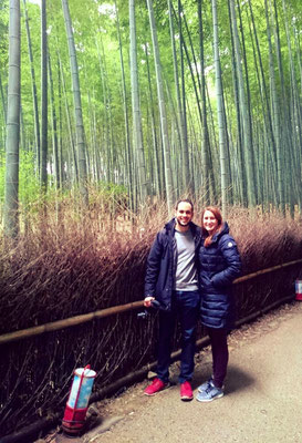 Path of the bamboo of Arashiyama