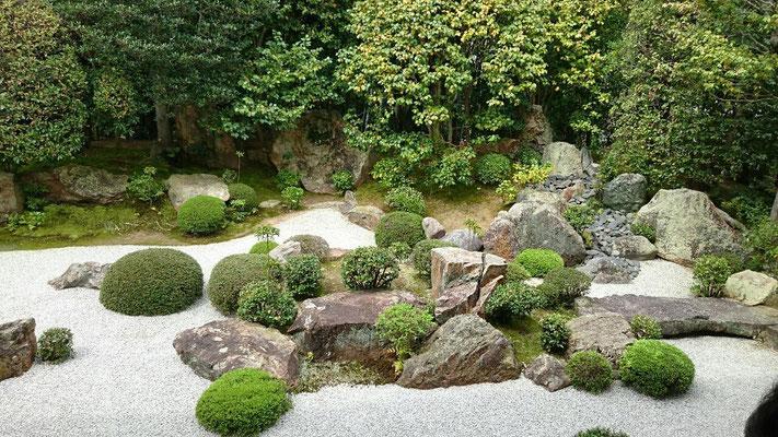 退蔵院枯山水庭園「元信の庭」